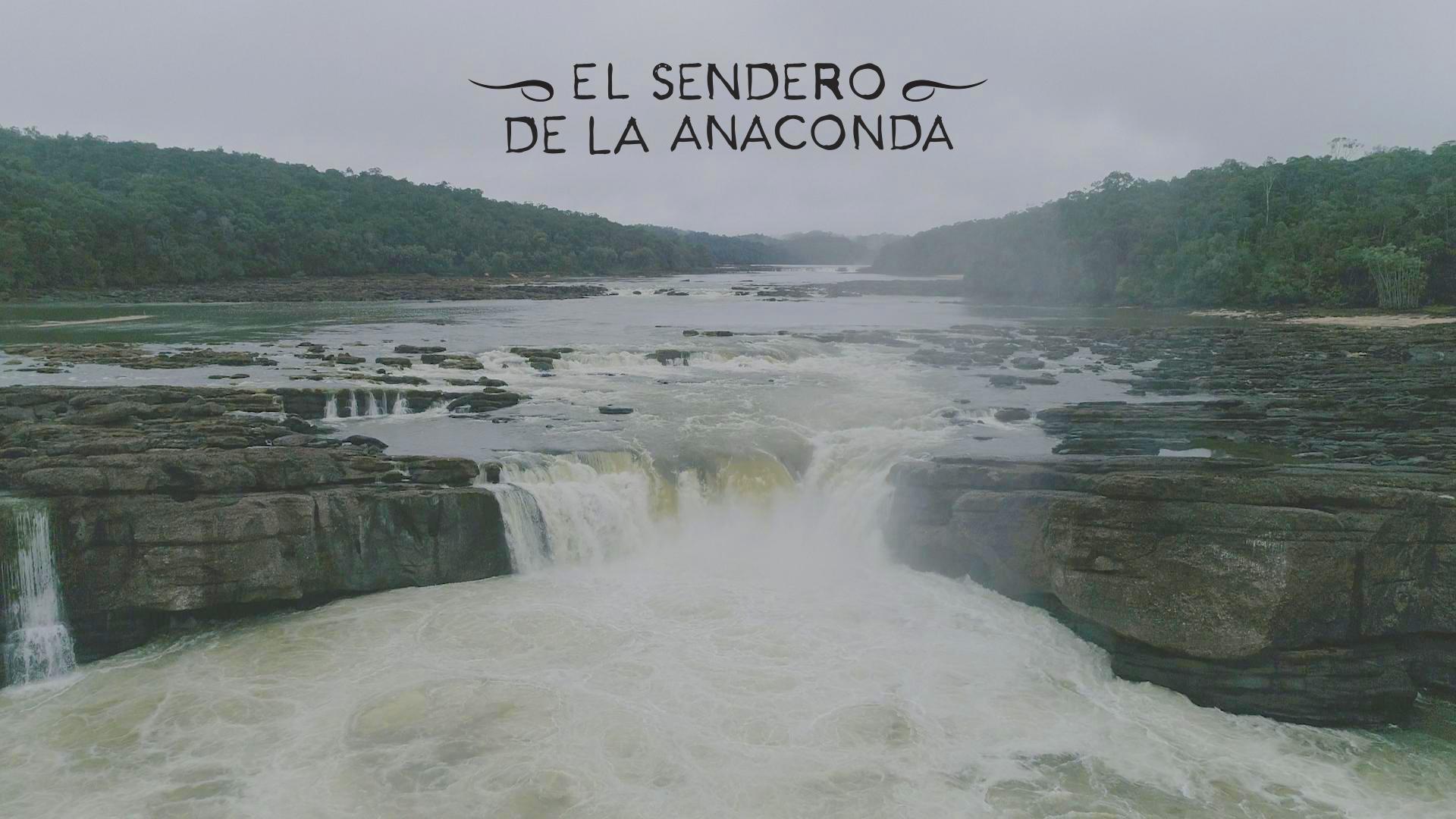 'El Sendero de la Anaconda' desde el 27 de junio en cines